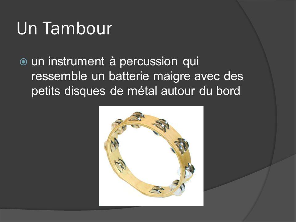 Un Tambour un instrument à percussion qui ressemble un batterie maigre avec des petits disques de métal autour du bord.