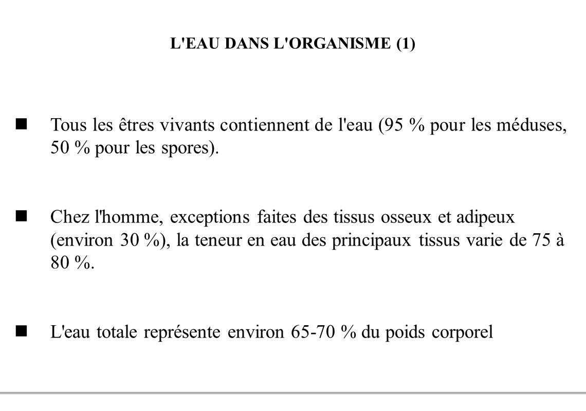 L EAU DANS L ORGANISME (1)