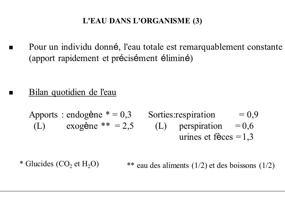 L EAU DANS L ORGANISME (3)