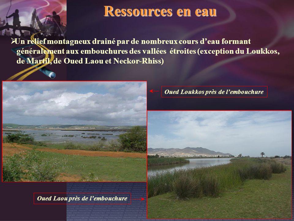 Oued Laou près de l'embouchure Oued Loukkos près de l'embouchure