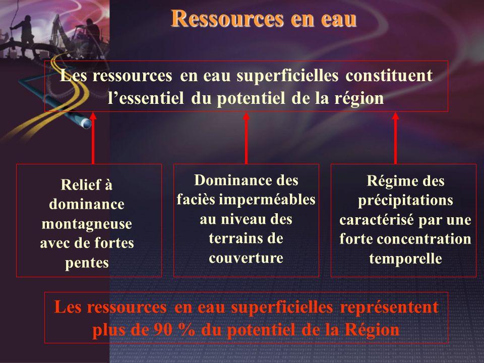 Ressources en eau Les ressources en eau superficielles constituent l'essentiel du potentiel de la région.