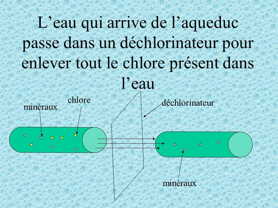 L'eau qui arrive de l'aqueduc passe dans un déchlorinateur pour enlever tout le chlore présent dans l'eau