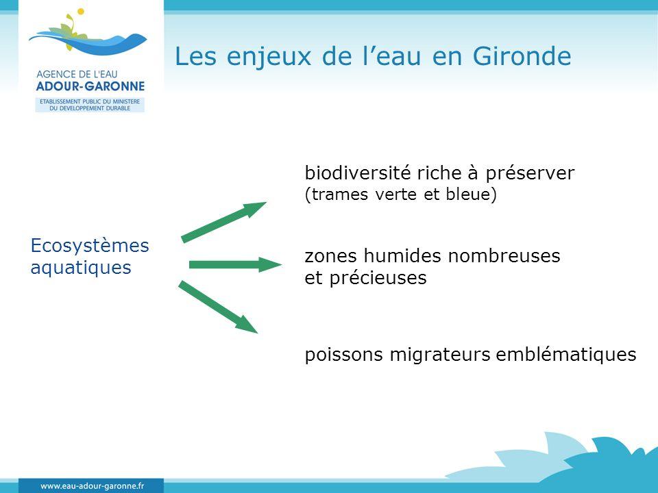 Les enjeux de l'eau en Gironde