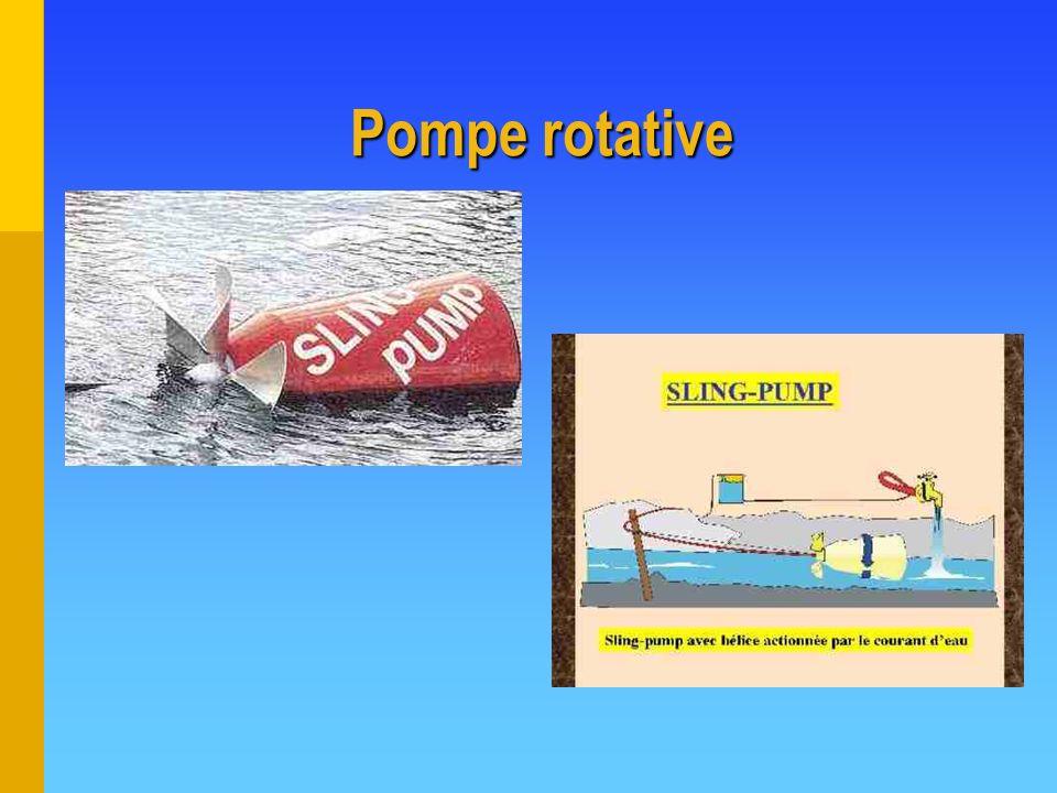 Pompe rotative