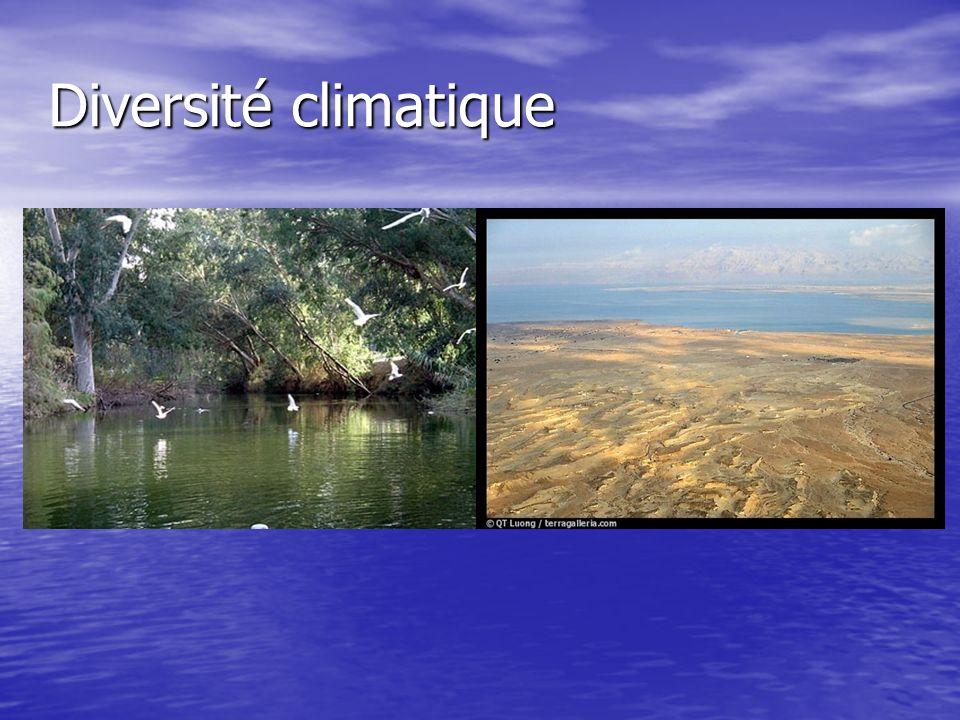 Diversité climatique
