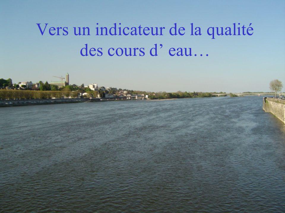 Vers un indicateur de la qualité des cours d' eau…