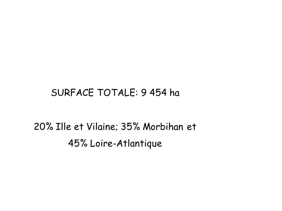20% Ille et Vilaine; 35% Morbihan et