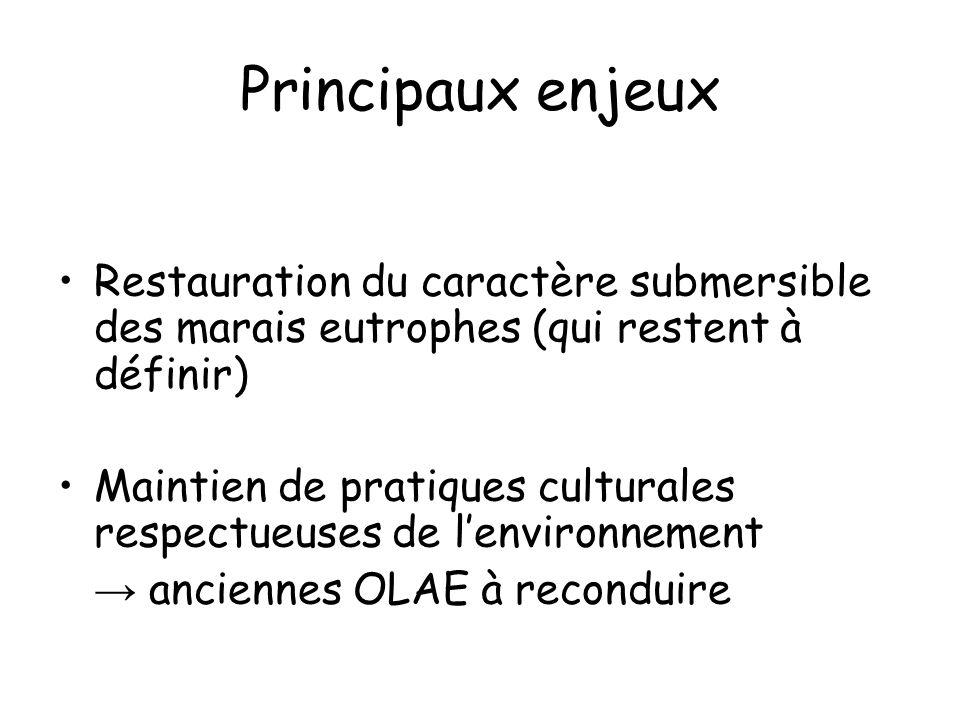 Principaux enjeux Restauration du caractère submersible des marais eutrophes (qui restent à définir)