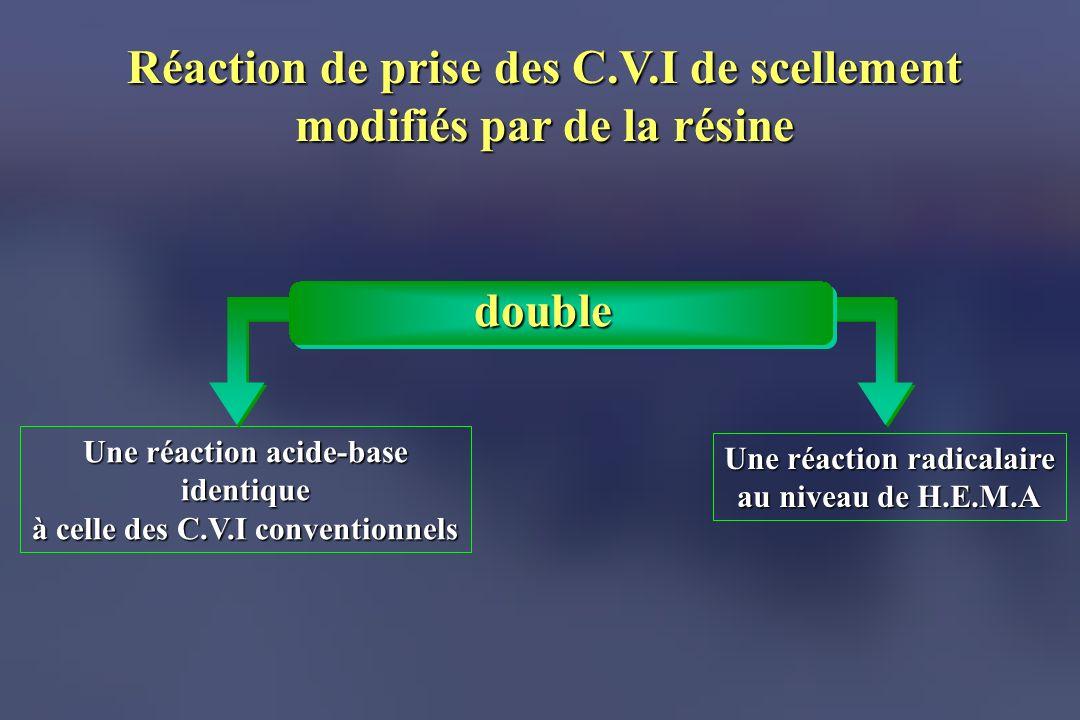 Réaction de prise des C.V.I de scellement modifiés par de la résine