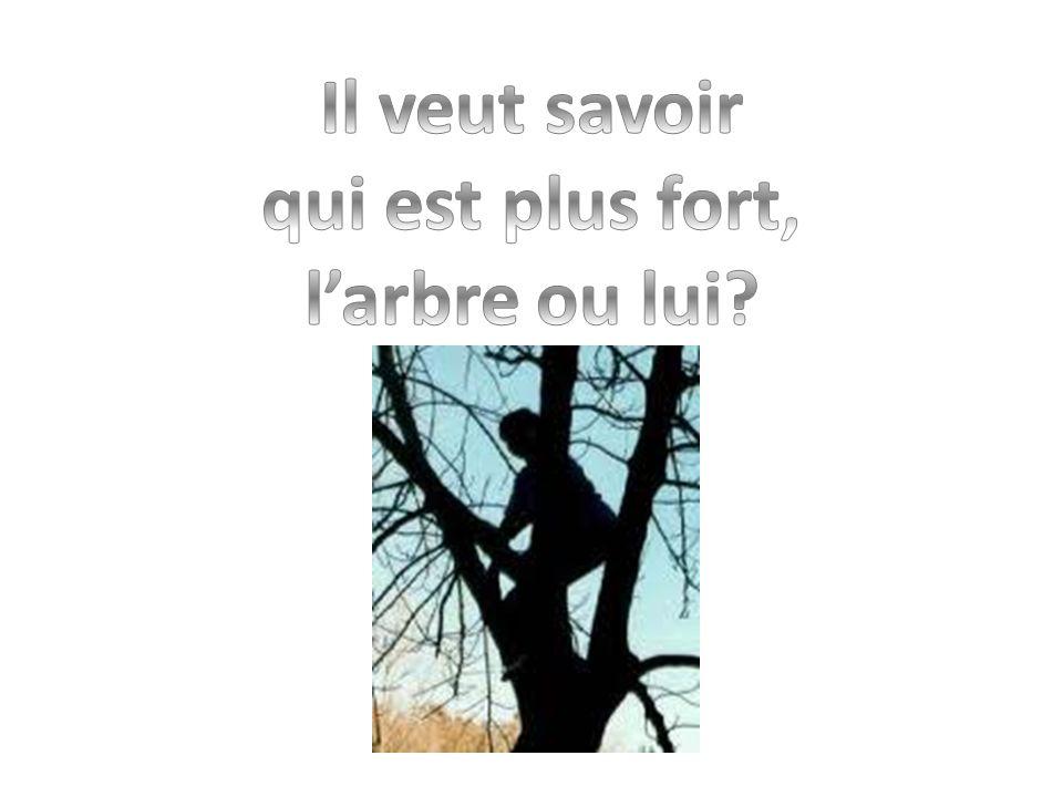 Il veut savoir qui est plus fort, l'arbre ou lui