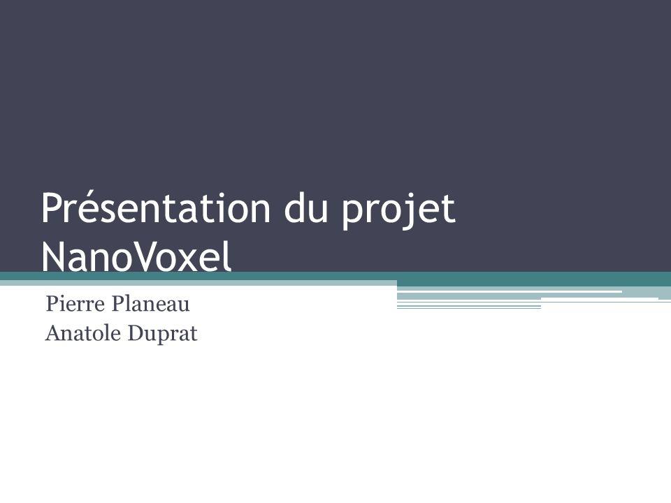 Présentation du projet NanoVoxel