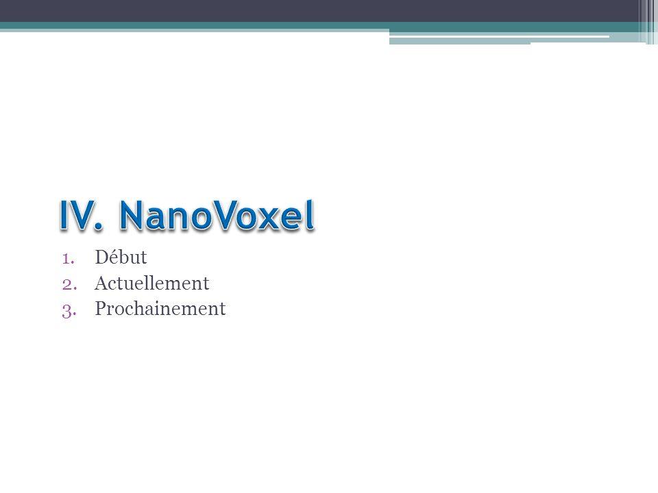 IV. NanoVoxel Début Actuellement Prochainement
