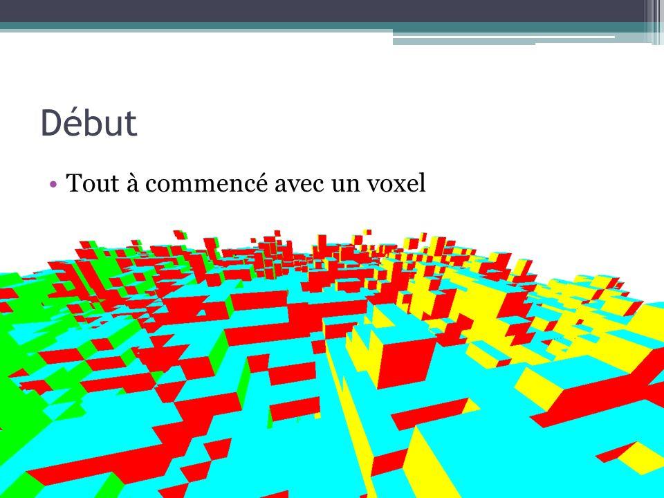 Début Tout à commencé avec un voxel
