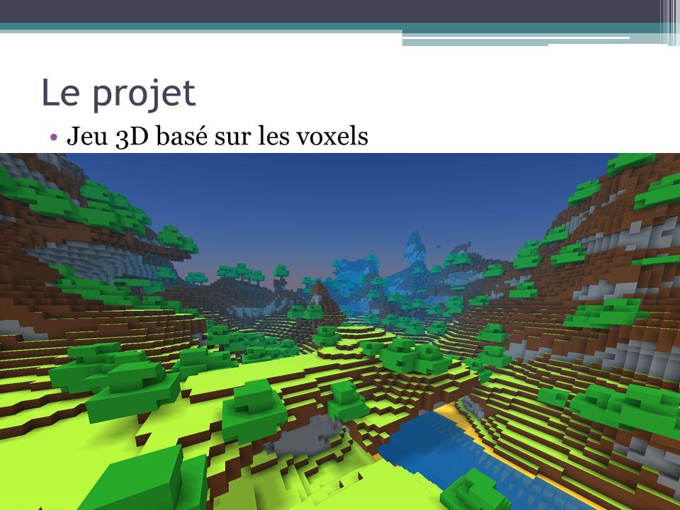 Le projet Jeu 3D basé sur les voxels