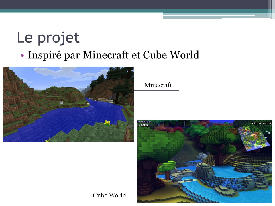 Le projet Inspiré par Minecraft et Cube World Minecraft Cube World