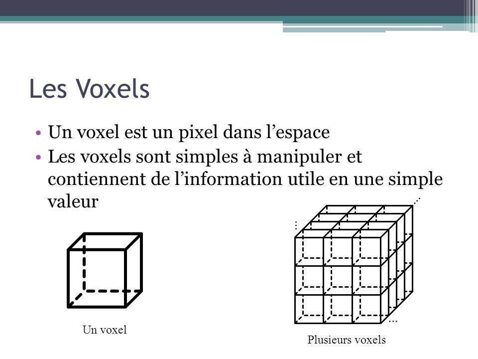 Les Voxels Un voxel est un pixel dans l'espace