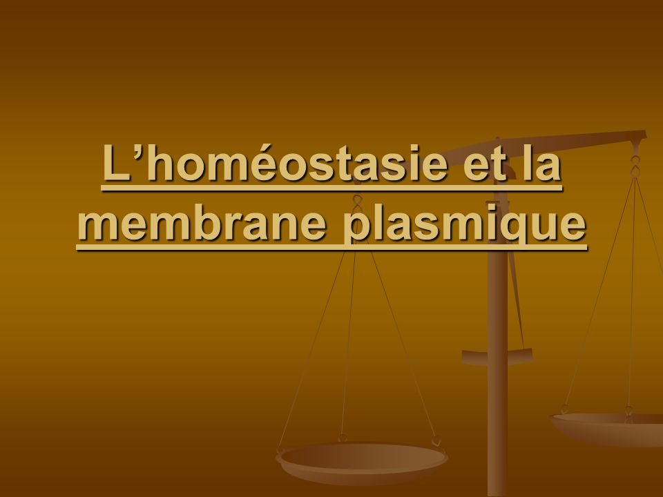 L'homéostasie et la membrane plasmique