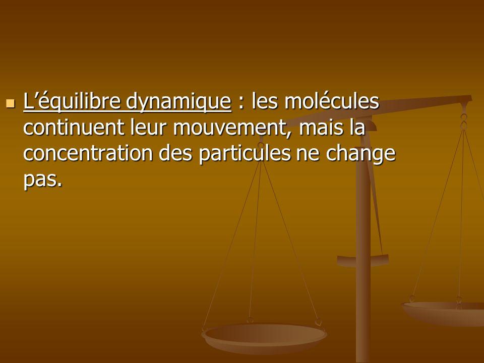 L'équilibre dynamique : les molécules continuent leur mouvement, mais la concentration des particules ne change pas.