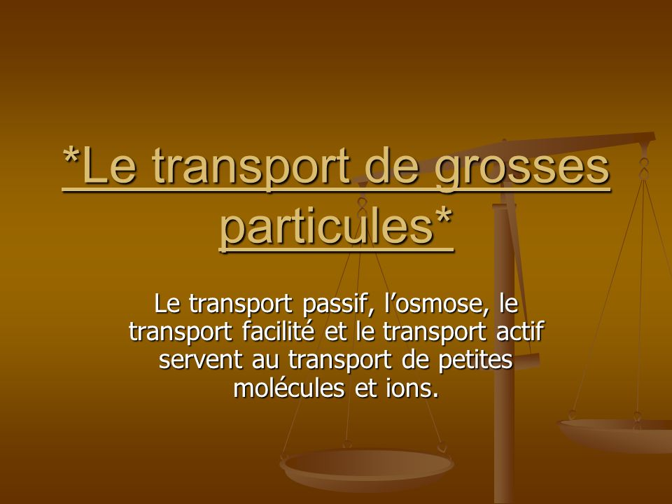 *Le transport de grosses particules*