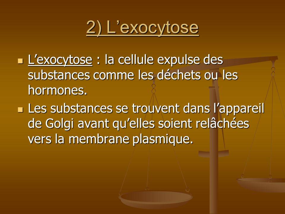 2) L'exocytose L'exocytose : la cellule expulse des substances comme les déchets ou les hormones.