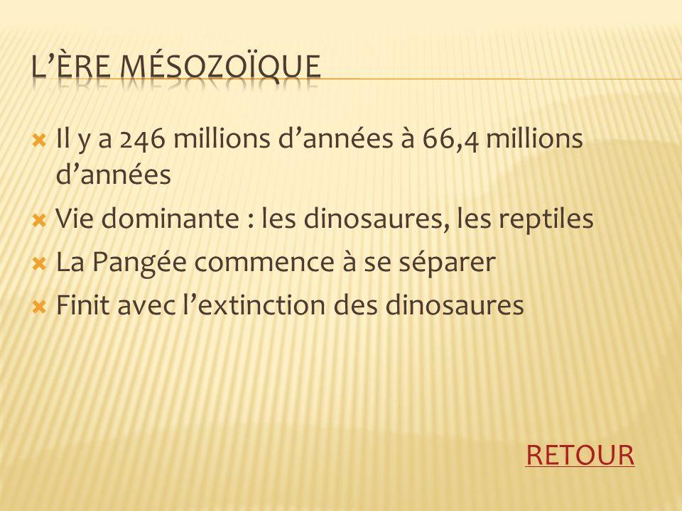 L'Ère mÉsozoÏque Il y a 246 millions d'années à 66,4 millions d'années