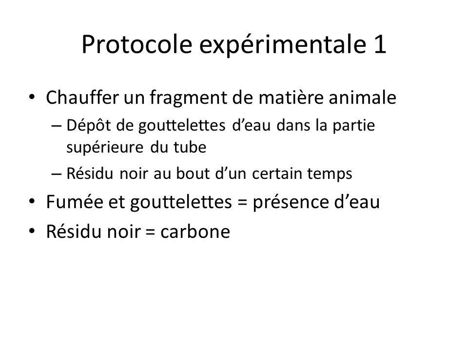 Protocole expérimentale 1