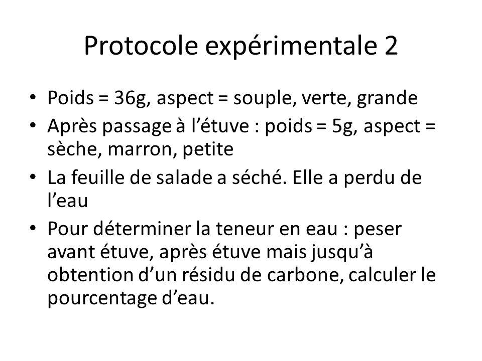 Protocole expérimentale 2