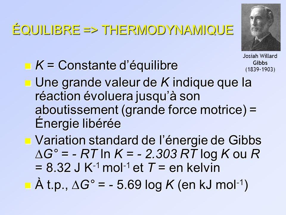 ÉQUILIBRE => THERMODYNAMIQUE