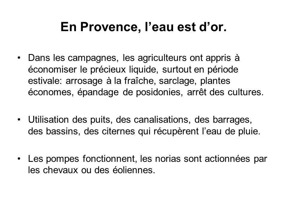 En Provence, l'eau est d'or.