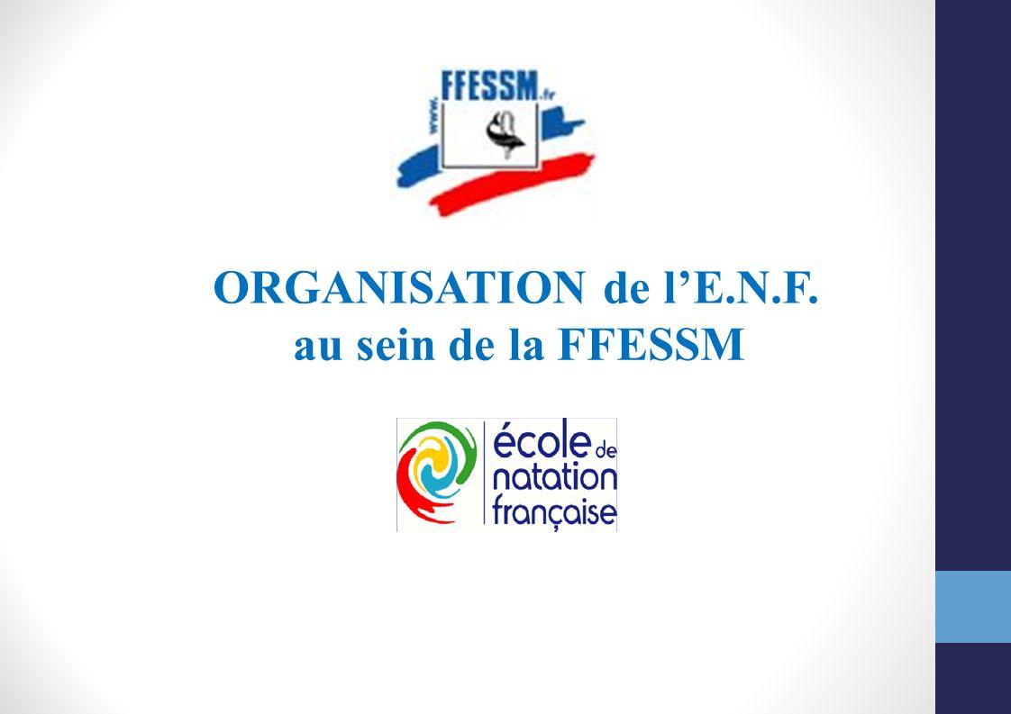 ORGANISATION de l'E.N.F. au sein de la FFESSM