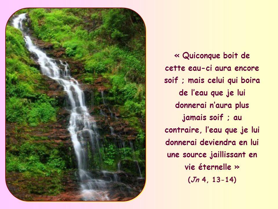 « Quiconque boit de cette eau-ci aura encore soif ; mais celui qui boira de l'eau que je lui donnerai n'aura plus jamais soif ; au contraire, l'eau que je lui donnerai deviendra en lui une source jaillissant en vie éternelle » (Jn 4, 13-14)