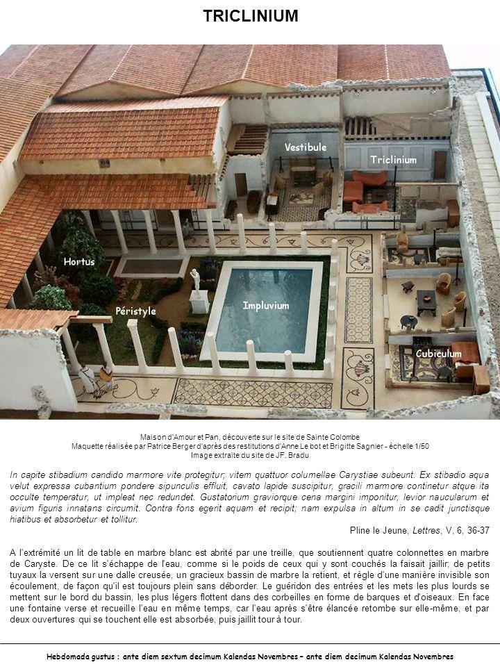 TRICLINIUM Maison d Amour et Pan, découverte sur le site de Sainte Colombe.