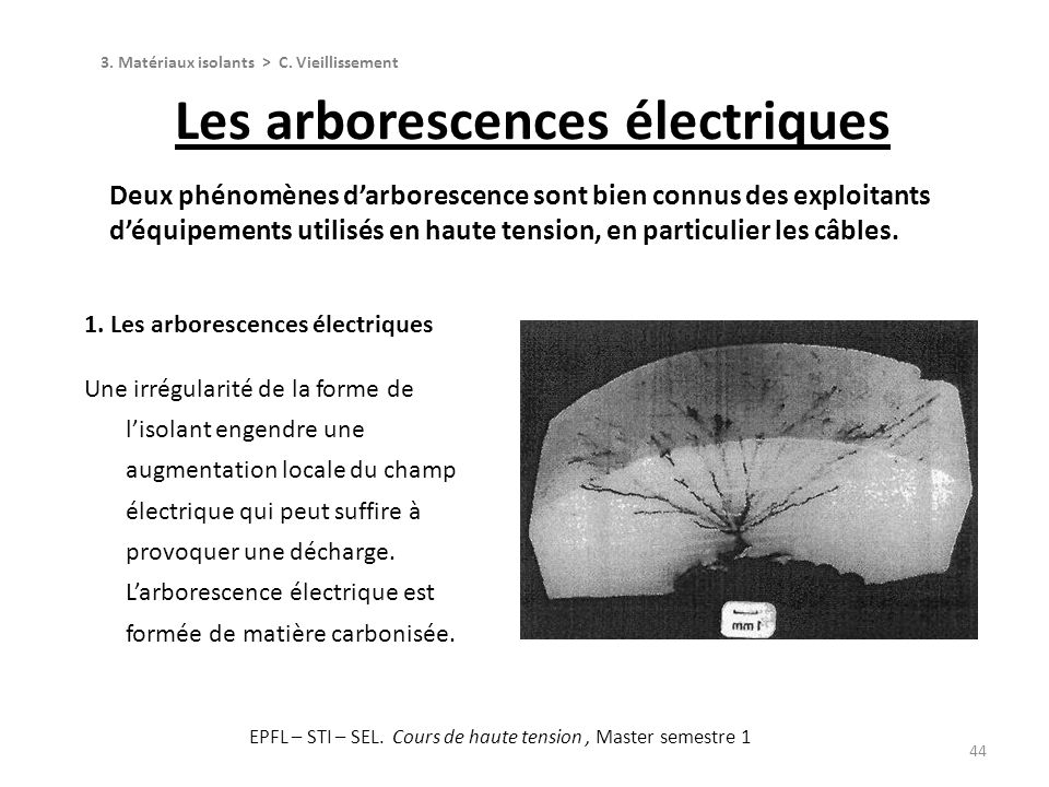 Les arborescences électriques
