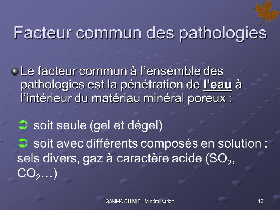Facteur commun des pathologies