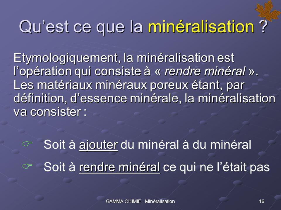 Qu'est ce que la minéralisation