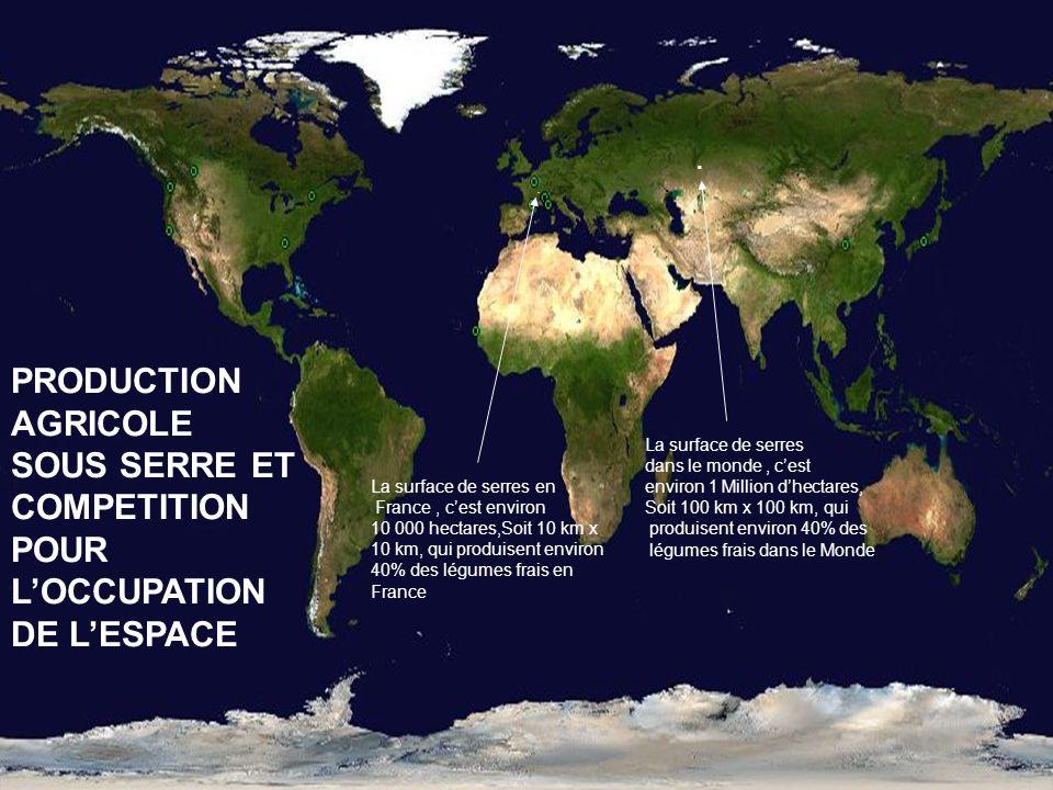 . . . PRODUCTION AGRICOLE SOUS SERRE ET COMPETITION POUR L'OCCUPATION DE L'ESPACE. La surface de serres.