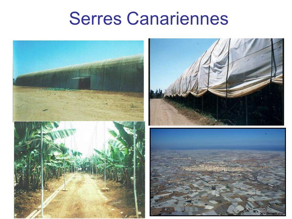 Serres Canariennes
