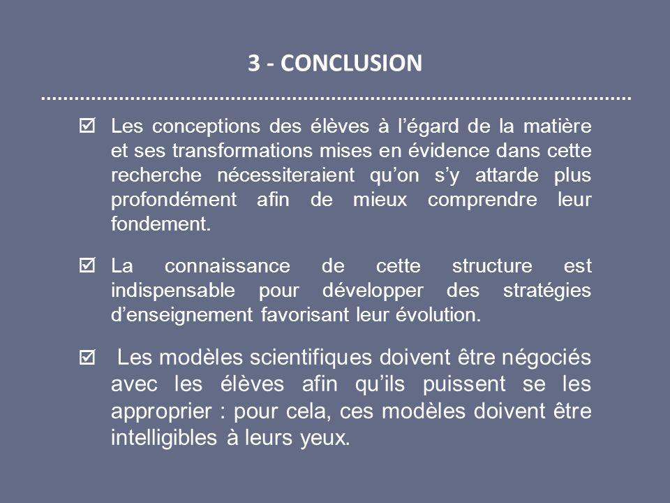 3 - CONCLUSION