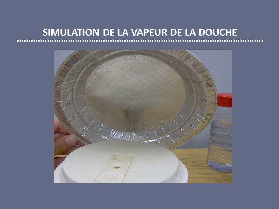SIMULATION DE LA VAPEUR DE LA DOUCHE