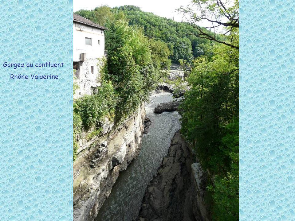 Gorges au confluent Rhône Valserine