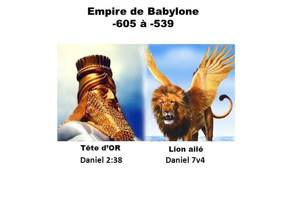 Empire de Babylone -605 à -539 Daniel 2:38 Daniel 7v4 Tête d'OR
