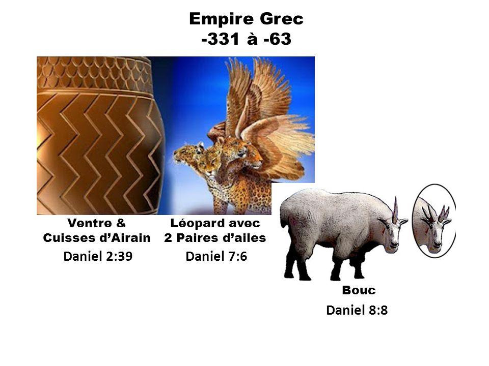 Empire Grec -331 à -63 Daniel 2:39 Daniel 7:6 Daniel 8:8 Ventre &