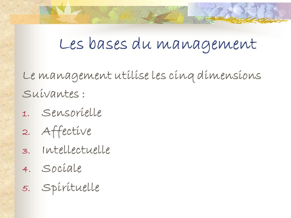 Les bases du management