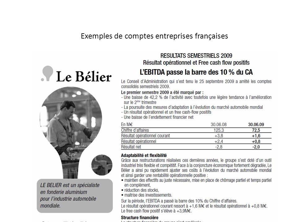Exemples de comptes entreprises françaises