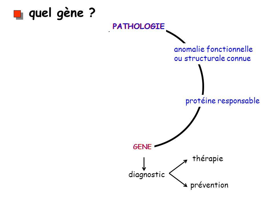 quel gène PATHOLOGIE anomalie fonctionnelle ou structurale connue