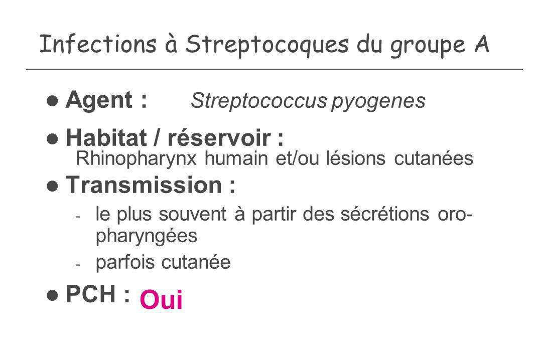 Infections à Streptocoques du groupe A