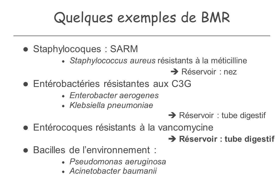 Quelques exemples de BMR