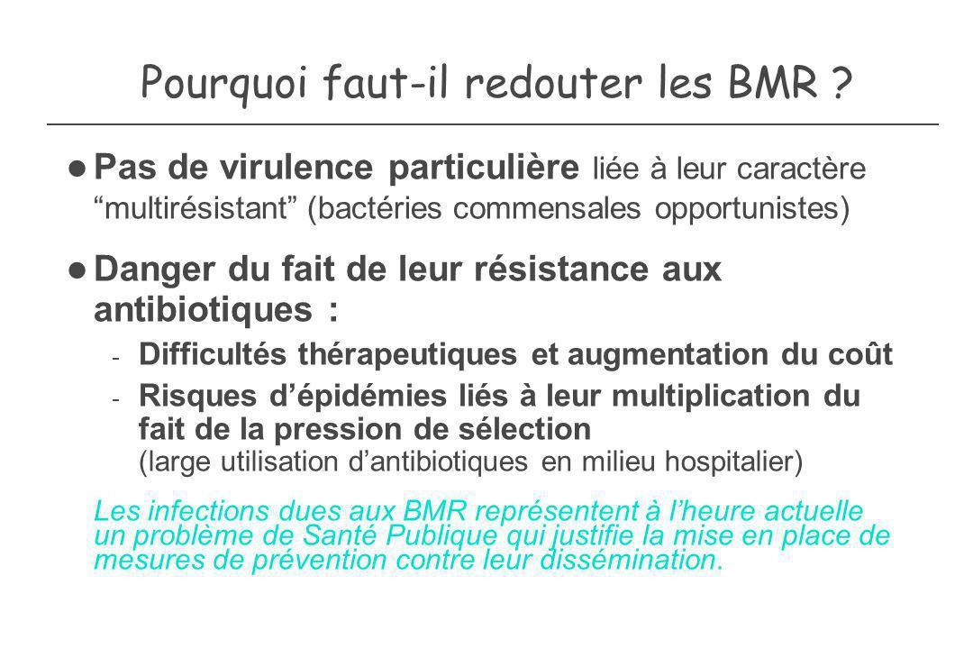 Pourquoi faut-il redouter les BMR