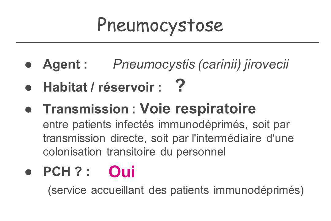 Pneumocystose (service accueillant des patients immunodéprimés) Oui