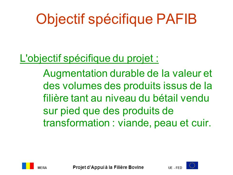 Objectif spécifique PAFIB